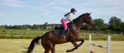 Reitschülerin springt mit Pferd über Hürde Reiterhof Witt auf Fehmarn