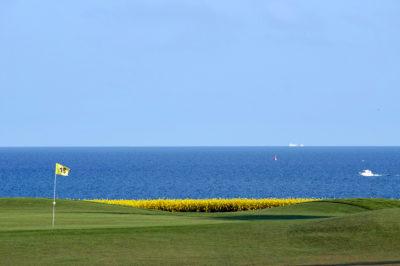 Golfen auf Fehmarn Golfplatz an der Ostsee Boot auf dem Meer